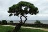 Waterfront on Vanu Road, Nuku'alofa, Tonga