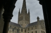 Norwich Cathedral, Norwich UK