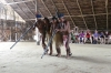 Dancing & Music demonstrations, Cipiá Indigenous Village, Rio Negro BR
