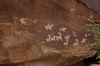 Petroglyphs circa 1650-1850, horses, goats and dogs, Arches National Park
