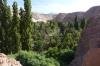 Jere Oasis, Atacama Desert CL