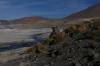 Geysers del Tatio, Atacama Desert CL