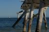 The jetty, Eucla WA AU