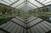 The green house, Umi-Jigoku hot springs, Beppu, Japan