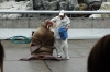 Walrus performance at Umitamgo (aquarium), Oita, Japan.  From very northern Pacific and Arctic seas.