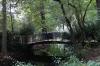 Little bridge in the Tiergarten, Berlin DE