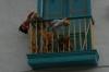 A 'Doll' balcony on Calle 11 ( Calle de la Toma del Agua), Bogotá CO