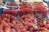 Vegetable Market,  Brno CZ