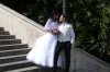 Wedding season. Budapest HU