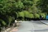 Manicured gardens, Taejongdae Cliffs, Busan, South Korea