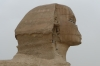 Sphinx of Giza, adorned by birds