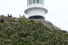 Lighthouse at Cape Hope, Table Mountain National Park, South Africa