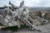 Wishing tree at Panaorama Point, Cappadocia