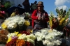 Flowers outside Iglesia Santo Tomas. Market day in Chichicastenango GT