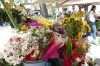 The flower market at Santuario Mariano, Cuenca EC