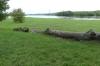The confluence of the Neris and Nemunas Rivers, Kaunas LT