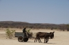 Dounkey Cart is a common sight in Namibia, this one at the Petrified Forest near Khorixas