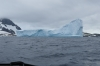 Icebergs from the Zodiac expedition near George's Point, Antarctica