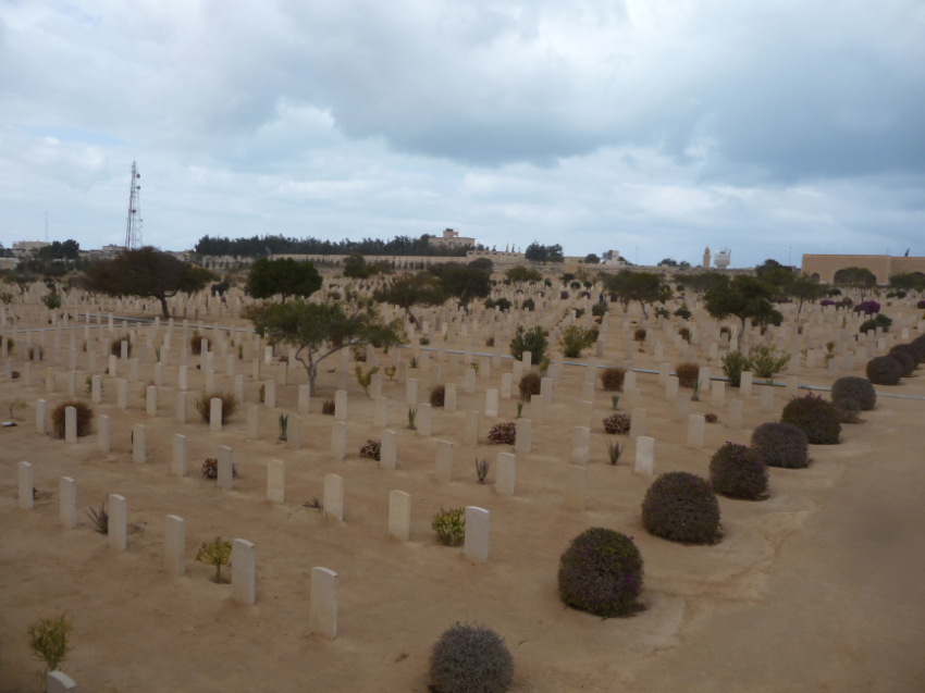 The Commonwealth war cemetry at El Alamein
