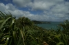 Matiatia Bay, Waiheke Island, Auckland NZ