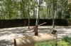 Doggy park. Park of Frederico Garcia Lorca (poet), Granada