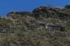 Lē'Ahi Diamond Head Crater Walk HI USA