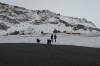 Christmas Day walk on Vik Beach, complete with black sand and snow