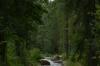 Walk around the Imatrankoski Rapids, Imatra FI