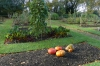 Vegetable garden at Swiss Cottage at Osborne House, Isle of Wight UK
