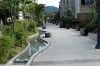 Ginkgo Avenue, Jeonju