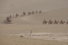 Camel train for the tourists. The Singing Sand Mountains and Crescent Spring, Dunhuang