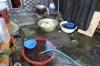 Making Kimchi, Farmland near Jirisan National Park
