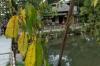 Hisagoike Pond & Yogaotei, Kenrokuen Gardens, Kanazawa, Japan