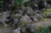 Old roots, Kenrokuen Gardens, Kanazawa, Japan