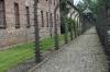 Auschwitz PL