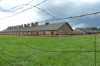 Birkenau Death Camp, PL