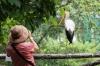 Bird Park, Kuala Lumpur