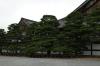 Ninomaru Garden in Nijo Castle (home of the Shogun), Kyoto, Japan