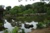 Lake at Kinkaku (the Golden Pavilion), Kyoto, Japan