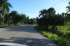On the road, passing sugar cane fields, La Romana DO