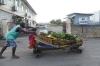 Fruit stalls in Falmouth JM