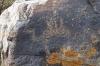 Petroglyphs, Cholpon-Ata