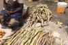 Sugar Cane. Market Day in Mbuyuni, Tanzania