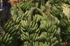 Bananas. Market Day in Mbuyuni, Tanzania