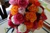 Locally grown roses - a massive export for Kenya, Green Crater Lake resort, near Naivasha
