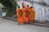 The elusive monks, Luang Prabang LA