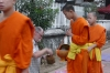 Giving alms to the Buddhist monks in early morning, Luang Prabang LA