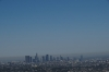 Los Angeles from Griffith Park
