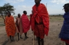 Young warriors jumping dance, Masai Village,  Masaimara, Kenya