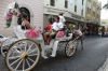 Romantic horse & carriages